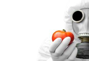 Kontaminierte Nahrungsmittel z.B. Gemüse