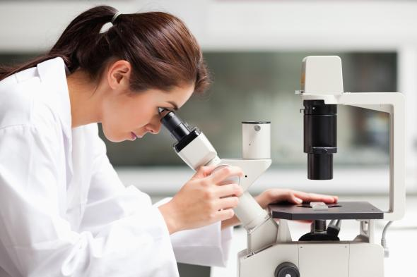 Krebsforschung - eine Wissenschaftlerin untersucht Proben unter einem Mikroskop.