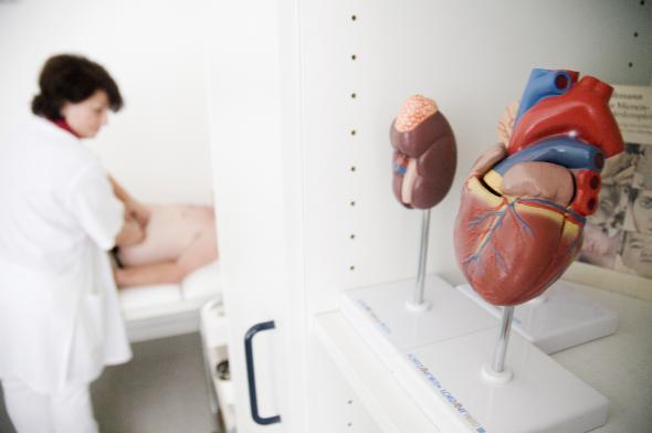 Untersuchung beim Arzt: Eine Leberzirrhose nicht heilbar.