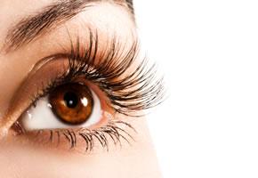 Makuladegeneration, das menschliche Auge