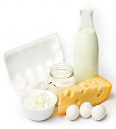 Milchprodukte wie Käse, Kefir, Joghurt