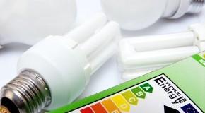 Mit Energiesparlampen bares Geld sparen