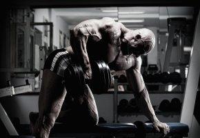 Muskelaufbautraining mit Hanteln