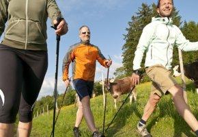 Nordic Walking stärkt die Rückenmuskulatur