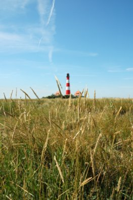 Nordsee - Leuchtturm im Sommer