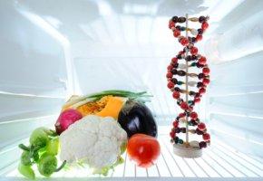 Nutrigenomik - Nahrungsmittelverwertung anhand vom Erbgut berechnen