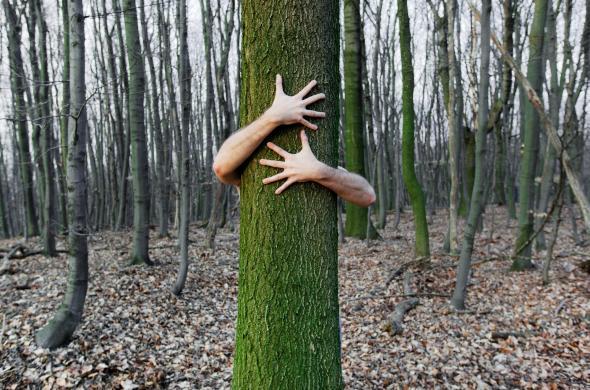 Ein Mann umarmt einen Baum leidenschaftlich.