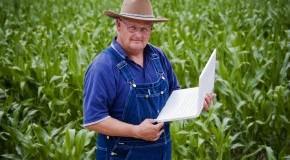 Online Farmer: Viehzucht und Ackerbau online spielen