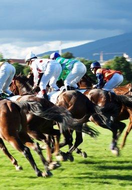 Pferderennen - Pferde mit der Startnummer 1 gewinnen oft das Rennen