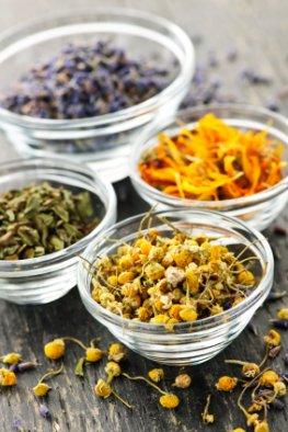 Phytomedikamente - Heilkräuter als Alternativmedizin