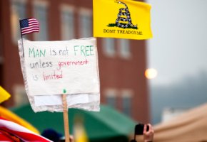 "Protestbewegung The-Tea-Party: ""Man is not FREE unless government is limited."""