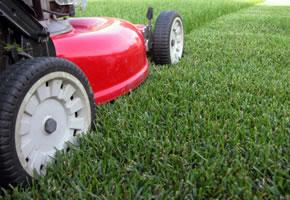 Rasen - Rasenpflege, Rasenmähen und das Stressfrei
