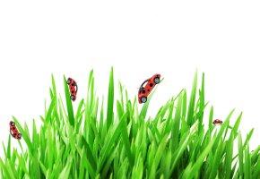 Sanfter Reisen: Ökologisch unterwegs