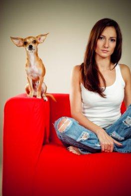 Schlechte Stimmung - Hunde sorgen in der Familie für 2000 Streitfälle in ihrem Hundeleben