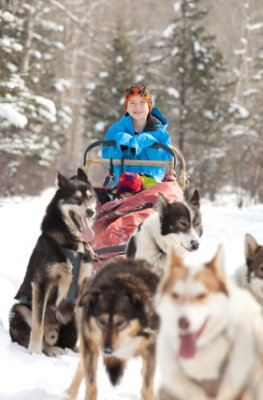 Hemsedal - Schlittentour mit Huskys in Norwegen