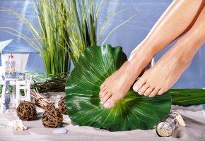 ca77ff1365a1 Regelmäßige Pflege für große und kleine Füße - Artikelmagazin