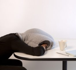 Mittagsschläfchen im Büro - Schreibtischschlafsack Ostrich