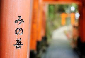 Shintoismus - der Weg der Götter - Fushimi Inari Shinto-Schrein in Kyoto/Japan