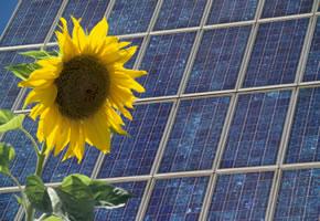 Solarenergie - Mit Photovoltaik und der Sonne Strom erzeugen