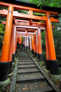 Torii Tore in Japan - Fushimi Inari Shinto-Schrein in Kyoto