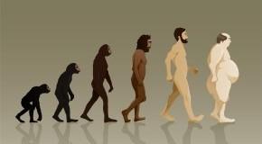 Übergewicht - vom Primaten zum Homo Sapiens