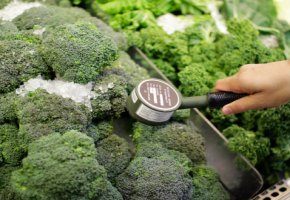 Radioaktivität in Nahrungsmittel - Überhöhte Strahlenwerte bei Gemüse messen
