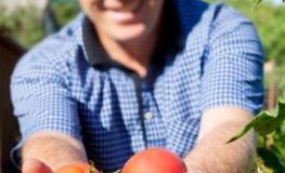 Urban Gardening - Schadstoffbelastung von Obst und Gemüse in Großstädten