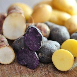Vitelotte: Blaue Kartoffel - sekundäre Pflanzenstoffe senken den Bluthochdruck