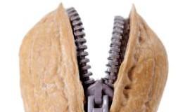 Walnüsse enthalten Omega-3-Fettsäuren