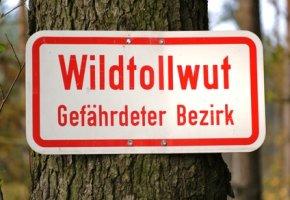 Hinweisschild - Wildtollwut - ein Bezirk der gefährdet ist