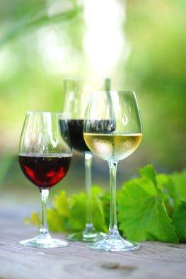 Weinprobe - Weintrinken mit Freude