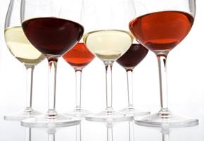 Weinverkostung, verschiedene Weingläser