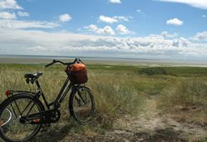 Weserradweg: Mit dem Fahrrad entlang der Küste