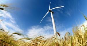 Heute wird Strom aus der Windkraft erzeugt.