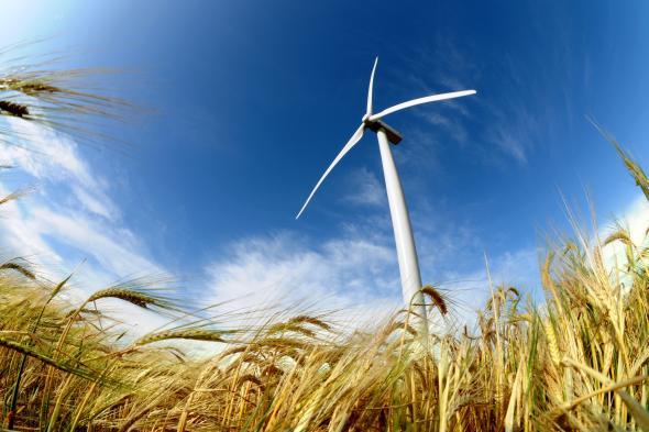 Windenergie: Heute wird Strom aus der Windkraft erzeugt.
