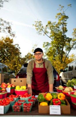 Wirtschaftlicher Schaden - Bauern können ihr Gemüse nicht mehr verkaufen