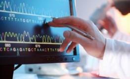 Autoimmunkrankheit: Wissenschaftler untersucht eine DNS-Sequence am Bildschirm