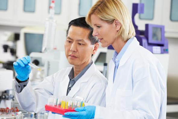 Wissenschaftliche Mitarbeiter arbeiten im Labor.