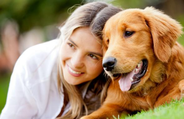 Zoonosen sind Krankheiten, die von Haustieren übertragen werden.
