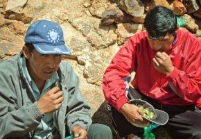 Tradition: Zwei bolivianische Minenarbeiter kauen Kokablätter
